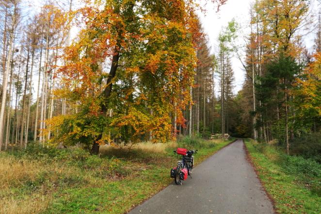 Senne-Radweg2
